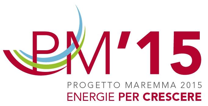 logo_pm_15